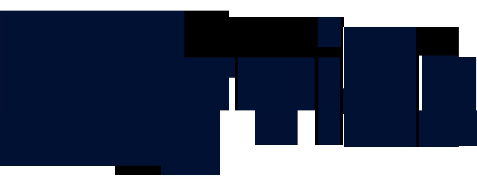 Ayvids